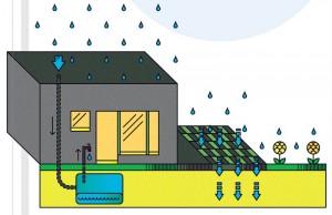 Дождевая система